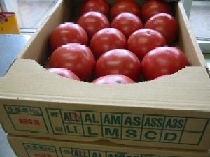 ガスパチョのトマト